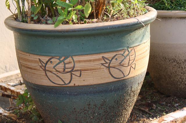 twitter vase
